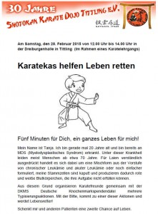 Karatekas_Flyer